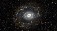 Messier 94 (NGC 4736), galaxia espiral en la constelación de Canes Venatici.