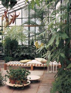 Amazing conservatory greenhouse ideas for indoor-outdoor bliss Indoor Garden, Indoor Plants, Outdoor Gardens, Indoor Outdoor, Patio Plants, Conservatory Plants, Outdoor Spaces, Outdoor Living, White Clematis