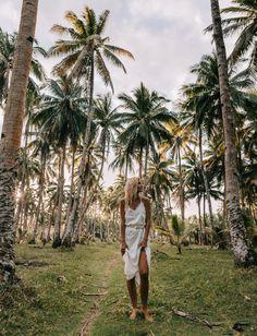a23cec931bf5a 97 Best Tropics images