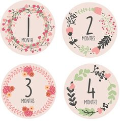 Printable baby posey flower monthly onesie by DanBellaCreations