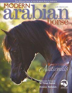 Issue 6, 2014 #ArabianHorses #Equestrian #Magazine
