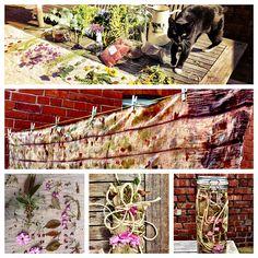 solar bundle fabric dyeing eco-printing, plant dyes