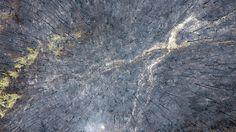 10일 강원 삼척시 도계읍 건의령 주변 산이 최근 발생한 산볼로 잿더미로 변해 처첨한 모습을 드러내고 있다. 삼척/연합뉴스