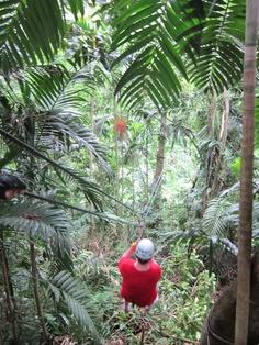 Ziplining in Jamaica!