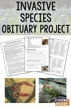 "Invasive Species Obituary Project Tired of doing the ""Wanted Poster"" when you teach invasive species? Try this obituary project instead! Promotes deeper thinking and learning! Biology Lessons, Science Lessons, Science Education, Science Activities, Life Science, Earth Science, Forensic Science, Higher Education, Plant Science"