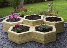 raised hexagonal planters