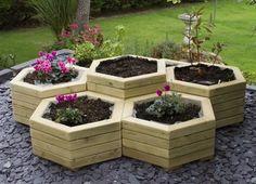 raised hexagonal planters
