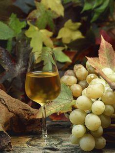 white wine grapes and wine glass Grapes And Cheese, Wine Vineyards, Chenin Blanc, Wine Down, Pinot Gris, Wine Art, In Vino Veritas, Wine Cheese, Italian Wine