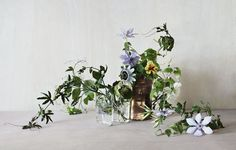 Vines - Flowers at The Garden Edit x Fjura