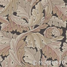 Morris & Co Tapet Acanthus Terracotta