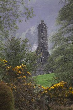 Ireland.I would like to visit this place one day.Please check out my website thanks. www.photopix.co.nz Fernweh, Beau Site, Luck Of The Irish, Erin Go Bragh, Irish Eyes Are Smiling, Irish Roots, Grande Bretagne, Famous Castles, Emerald Isle