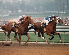 Alysheba beats Ferdinand in the 1988 Santa Anita Handicap
