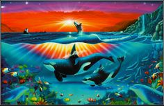 Orca Pod ~ Jamen Percy