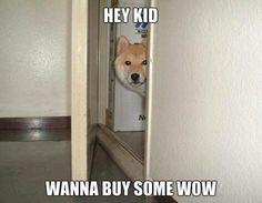 Hey Kid, wanna buy some WOW?
