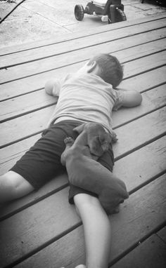 Dachshund Puppy love.
