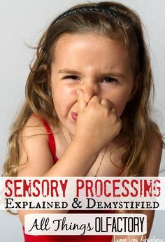Sensory Processing Olfactory System Explained | Simple explanation from a teacher and educator. LOVE the Printable! #spd #sensory