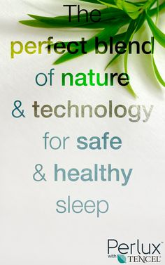 Enjoy a comfortable, dry, and safe sleep with Tencel bedding protection products by Perlux. Wood Source, Healthy Sleep, Healthy Living, Bedding, Retail, Accessories, Products, Healthy Life, Bed Linens