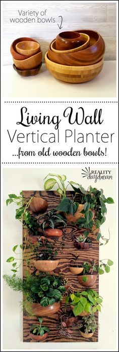 Make this 'Living Wall' Vertical Planter our of wooden bowls... CUT IN HALF! Click through for the tutorial {Reality Daydream}