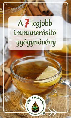 The 7 best immune-boosting herbs – Bloğ Influenza B, Flu Symptoms, Immune System, Herbalism, Healing, Herbs, Food, Essen, Yemek
