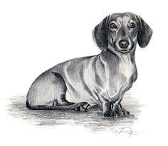 Popular items for dachshund dog art on Etsy
