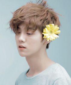gazing at luhan's beautiful face [ // ]