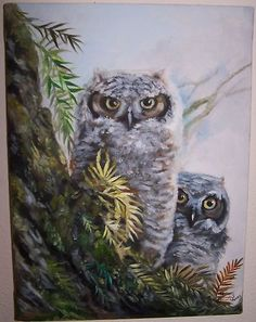an original oil painting I just listed on ebay, it is of some young Great horned Owls , photo taken by my father  at wildlife refuge in Ridgefield WAshington