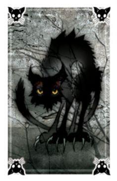 Spooks black cat card.