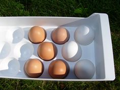 I adore eggs, the way they look with their different shades of white, off-white, tan, brown, green, and blue, their smooth shell, their sensual shape. I love to eat eggs, the quick and easy package…