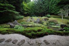 高野御室 光臺院(こうだいいん)の庭。 今週末のラジオ寺子屋・高野山では2週に亘り光台院からの音声をお届けします。 #高野山 #koyasan #庭 #庭園 #日本庭園 #fmはしもと #81.6 #japanesegarden #和 #buddhisttemple #buddhistgarden