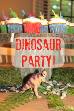 dino party :)