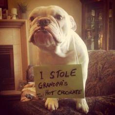 I stole grandpas hot chocolate… I may do it again. Sorry