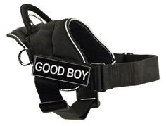 DT Fun Harness, Good Boy, Black With Reflective Trim, Large - Fits Girth Size: 32-Inch to 42-Inch -- Be sure to check out this awesome product. (This is an affiliate link) #CatLovers