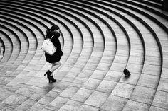 pigeon by Hiroharu-Matsumoto