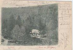 Šternberk, partie z lesa, DA Snow, Outdoor, Outdoors, Outdoor Games, The Great Outdoors, Eyes, Let It Snow