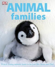 This is one of the titles of books for children that you can read for free from We Give Books.Org called Animal Families.