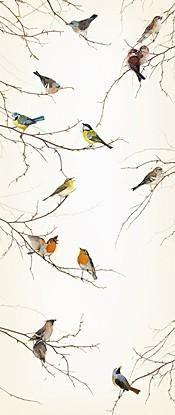 Deurposter Komar - Birds - FotobehangFactory.nl