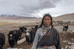 tibetan nomad women - Google zoeken