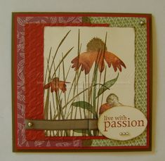 Inspired By Nature by catrules - Cards and Paper Crafts at Splitcoaststampers Flower Stamp, Flower Cards, Pretty Cards, Cute Cards, Nature Paper, Square Card, Stamping Up Cards, Fall Cards, Homemade Cards
