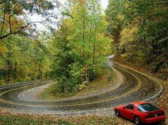 Pig Trail, Arkansas.....one scary road!!!