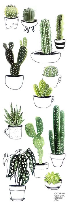 """Artwork by Catarina Oliveira. Cactus pots from my sketchbook - watercolor, Micron pen and white Gelly Roll pen. Inspired by the Skillshare class """"Sketchbook Practice: Make Everyday Objects Pop With Watercolour and Pen"""" by Ohn Mar Win."""