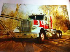 10 Freightliner Trucks Ideas Freightliner Trucks Freightliner Trucks