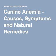 How To Treat Hemolytic Anemia Naturally