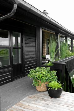 TERRACE BEFORE AND AFTER - Therese Knutsen Home Panel, Small Balcony Garden, Modern Planters, Black House, Most Beautiful Pictures, Outdoor Gardens, Outdoor Living, Garden Design, Backyard