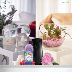 Easy DIY projects can help you bring spring indoors. Watch how we created a spring-themed terrarium.