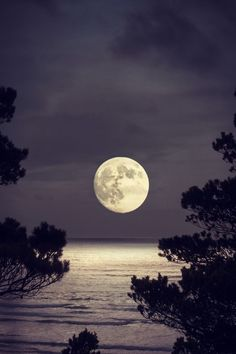 http://beautymothernature.tumblr.com/post/55544218267/thats-amore-cape-share-moments  Beautiful Mother Nature : Photo