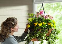 Choosing the Right Spring Annuals for Your Hanging Baskets | Garden Club