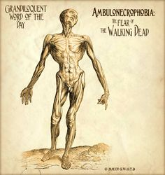 As in, I will be sooo glad when this fad of ambulonecrophobia is over.  Get over the zombies, folks!