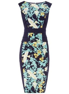 Dorothy Perkins Beautiful Dove Print Turquoise & Teal Dress