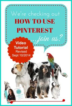 Pinterest Expert shares how to easily navigate Pinterest's newest layout as of Sept 10th! CLICK HERE to watch the video tutorial http://www.whiteglovesocialmedia.com/pinterest-consultant-101-beginners-guide-how-to-easily-navigate-pinterest/ #PinterestForBusiness #PinterestTips #PinterestCourse