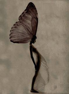 The Metamorphosis, fairy Foto Fantasy, Fantasy Art, Collage Kunst, Arte Obscura, Arte Sketchbook, Butterfly Art, Butterflies, Butterfly Quotes, Papillon Butterfly